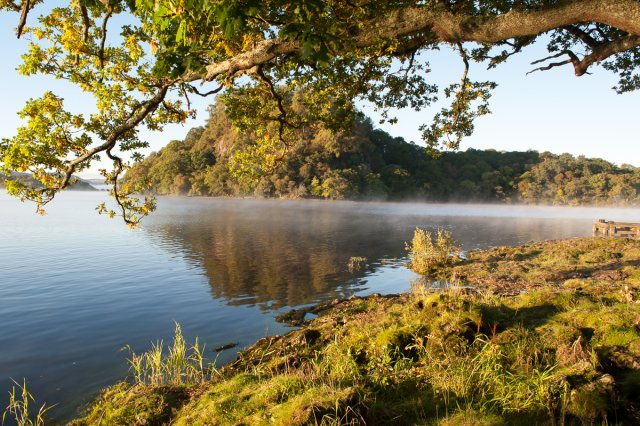 Friends of Loch Lomond and the Trossachs National Park